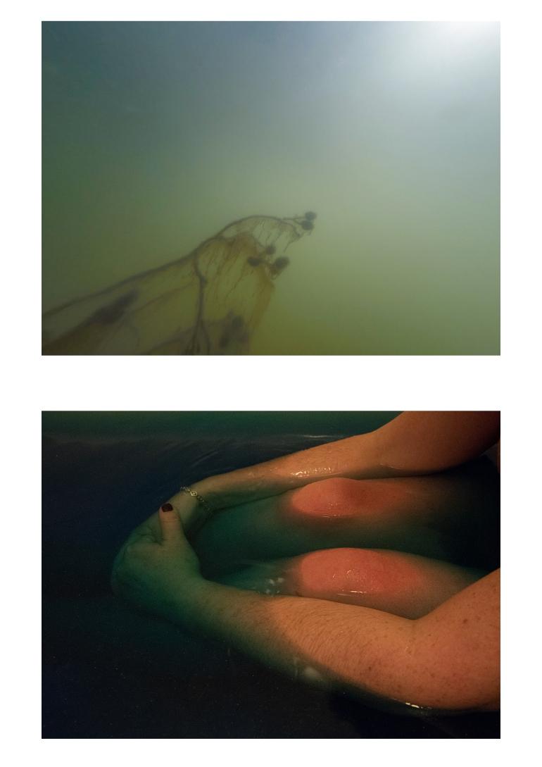 Untitled-37